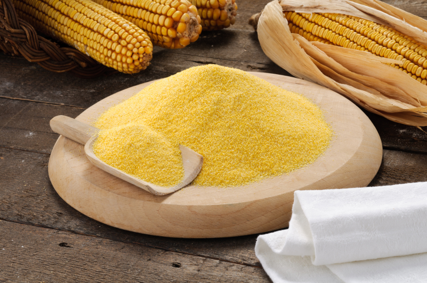 Maize and Corn Flour Suppliers India